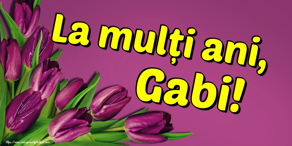 Felicitari aniversare De Sfintii Mihail si Gavril - La mulți ani, Gabi!