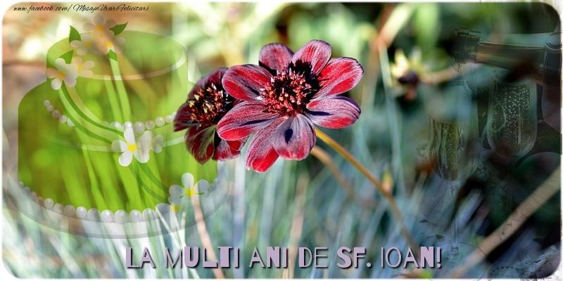 Felicitari aniversare De Sfantul Ioan - La multi ani de Sf. Ioan!