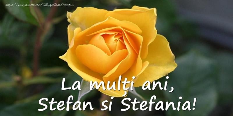 Felicitari aniversare De Sfantul Stefan - La multi ani, Stefan si Stefania!