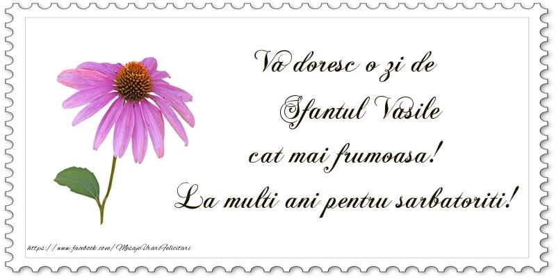 Felicitari aniversare De Sfantul Vasile - Va doresc o zi de Sfantul Vasile cat mai frumoasa! La multi ani pentru sarbatoriti!