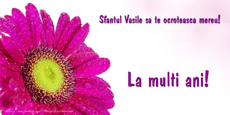 Felicitari aniversare De Sfantul Vasile - Sfantul Vasile sa te ocroteasca mereu! La multi ani!