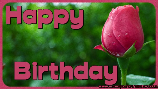 Felicitari Aniversare in limba Engleza - Happy Birthday.