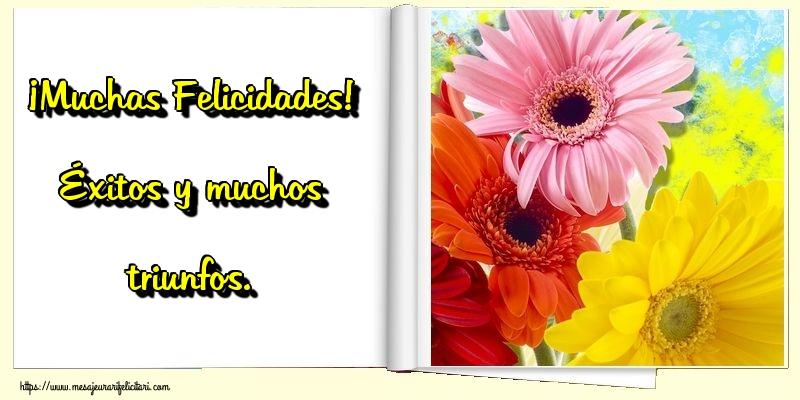 Felicitari Aniversare in limba Spaniola - ¡Muchas Felicidades! Éxitos y muchos triunfos.
