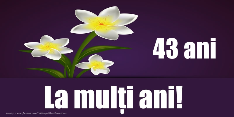 43 ani La multi ani!